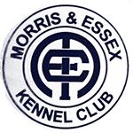 Morris&Essex Welsh Terrier