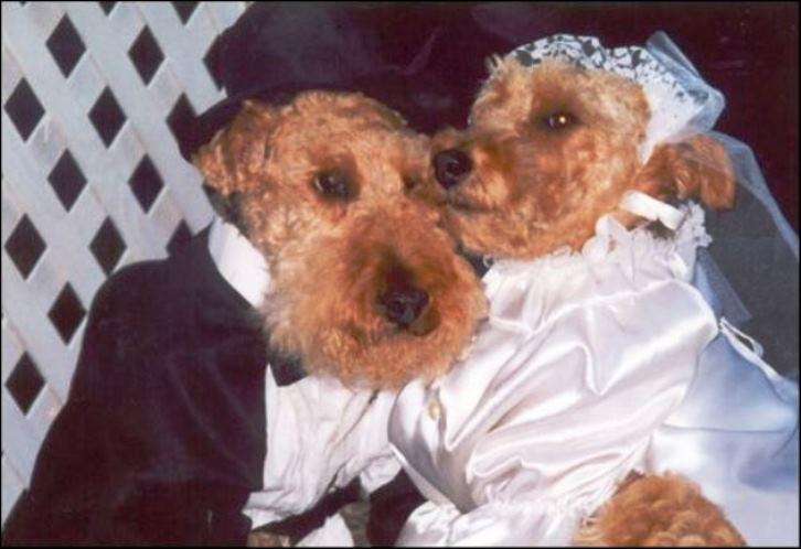 Chuck and Steffi