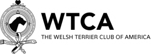 WelshTerrierCA3-sm