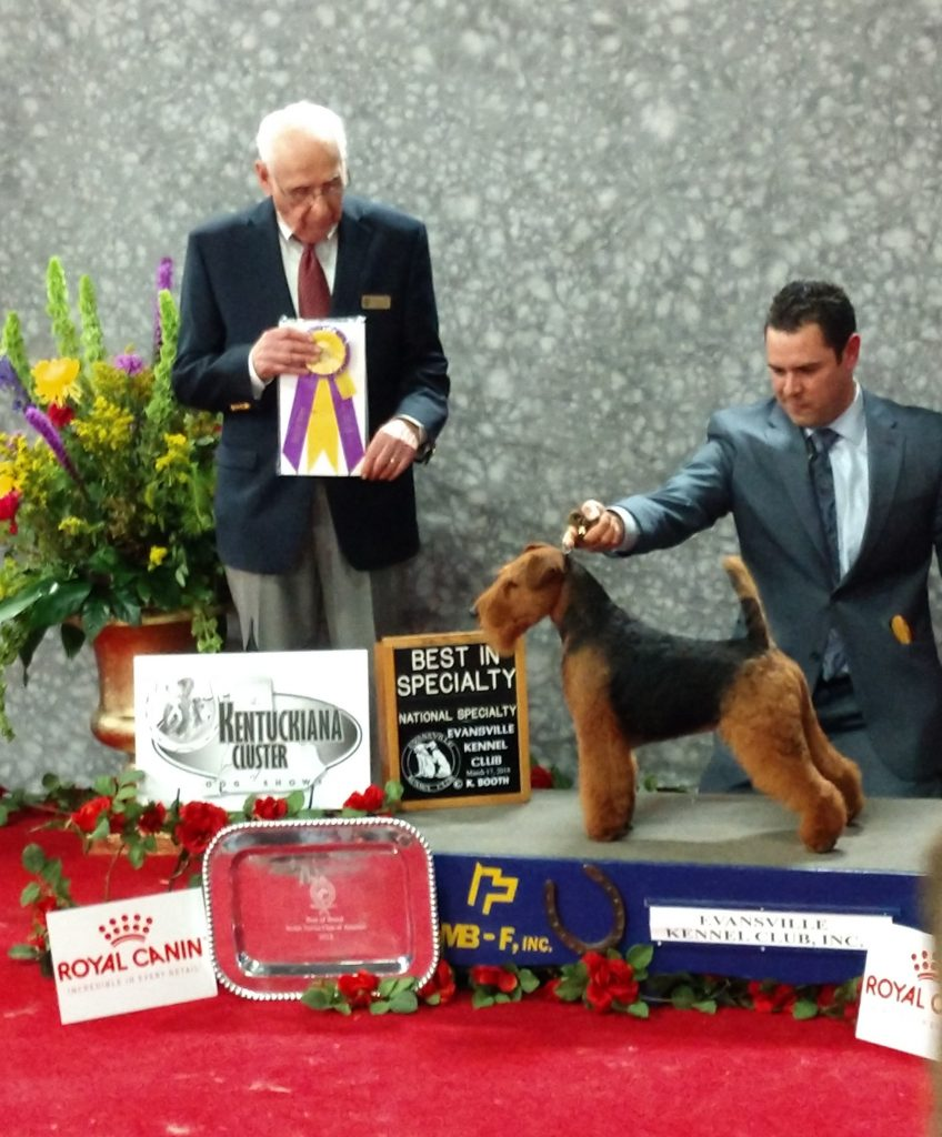Captain Jack Best of Breed at National Specialty!