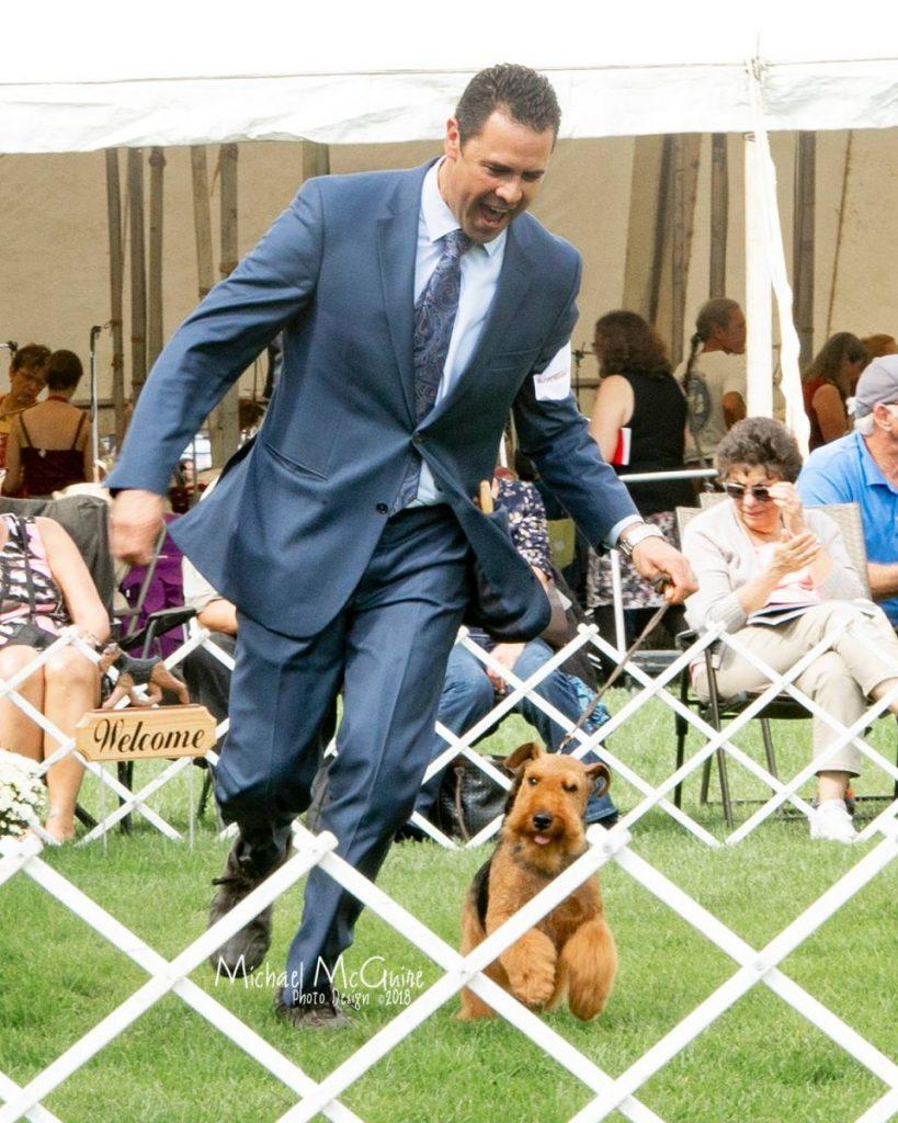 Captain Jack Welsh Terrier