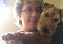 Trevor Welsh Terrier